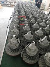 防爆路燈燈具140W,冰庫防爆路燈燈具
