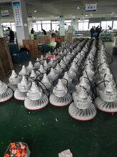 管廊LED防爆路燈60W_LED防爆路燈BAD85