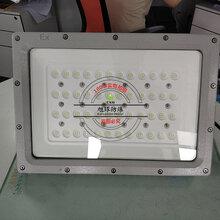 SW8140防爆投光燈