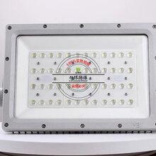 管廊110W防爆燈具,防爆燈具GB8040