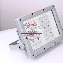 冷庫170W防爆燈具_防爆燈具BFC8410