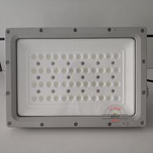 防爆LED灯,化工厂防爆LED灯70W图片