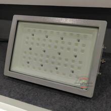 FBL160明港防爆高顶灯图片