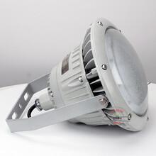 工程60W防爆路灯灯具,防爆路灯灯具图片