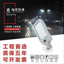 防爆泛光灯XQL8103,气体环境防爆泛光灯140W图片