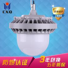 XQL9822防爆平台灯90W图片