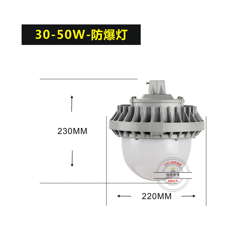XQL9822防爆led路灯30W