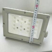 LED防爆路灯240W图片