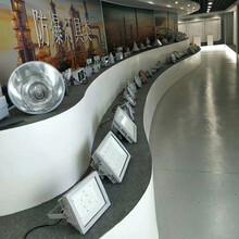 LED防爆工矿灯60W图片