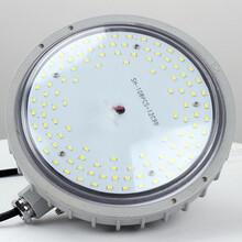 防爆LED照明灯10W,防爆防腐灯10W图片