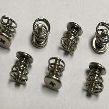 廠家直銷顯卡彈簧螺釘M2/M2.5散熱器螺絲圖片