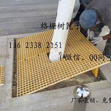 广东广州鑫龙玻璃钢格栅洗车房漏水网格格栅板地板树篦子复合地沟盖板图片