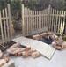 昌平防腐木木桥设计吊桥施工栅栏围栏施工