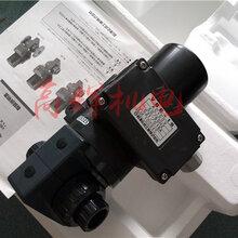 日本前泽化成电动阀门VBE-25AC200V电动阀门PVC