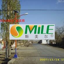 吕梁太阳能路灯诚信厂家推荐图片