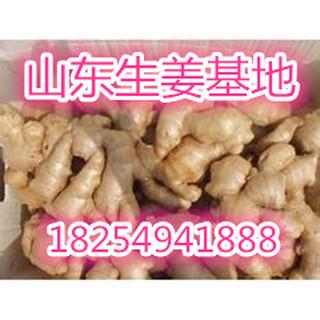 山东冷库红富士苹果产地价格图片5