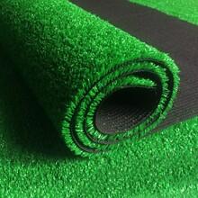 北京人造仿真草皮人造草坪幼兒園地毯草坪環保綠草坪圖片