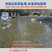 鱼池水净化湖南长沙水池过滤水绿水混解决方案