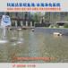 景观鱼池水处理湖南湘潭净化鱼池浓绿水解决方案