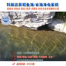 花园鱼池水处理浙江衢州大型养鱼池过滤系统3天清澈见底厂家直销