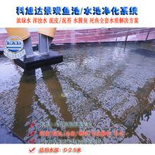 锦鲤鱼池过滤系统大型鱼池过滤设备值得信赖的生物净化器厂家直销