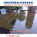 园林景观水处理湖南衡阳鱼池水净化器水绿一次性解决方案