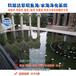 鱼池水处理设备湖南张家界景观水体治理常年无需换水