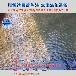 锦鲤鱼池过滤系统湖南益阳过滤鱼池设备水绿一次性解决方案