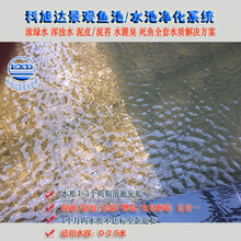 鱼池过滤系统设计图浙江杭州鱼池水过滤系统生物净化系统厂家直销