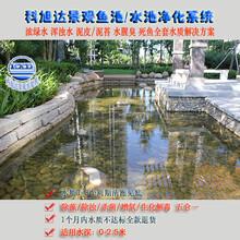 景观水处理设备浙江舟山户外鱼池过滤系统水绿水混解决方案