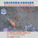 景观水池水循环湖南永州景观鱼池水净化水质一次性解决方案