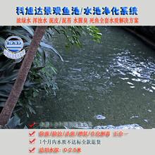 鱼池过滤浙江丽水大型鱼池过滤设备值得信赖的生物净化器厂家直销