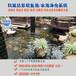 鱼池过滤箱湖南株洲鱼池净化水质一次性解决方案