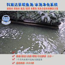鱼池的过滤系统浙江杭州景观鱼池水处理设备常年无需换水厂家直销