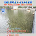 锦鲤鱼池过滤系统湖南岳阳景观水质净化3天清澈见底