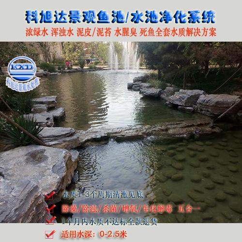 养锦鲤的过滤系统江苏宿迁养鱼池过滤设备生物净化系统