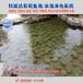 园林水池景观湖南衡阳鱼塘水净化水绿水混解决方案