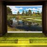 模拟高尔夫家庭式自用高尔夫5D高清模拟真实画面