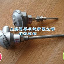 上海昊誉供应不锈钢K型热电偶防腐耐磨快速热电偶图片