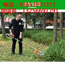 小型电动割草机24V电动割草机48V电动割草机厂家图片