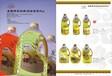 酥油灯,灯油,红斗烛,黄斗烛系列产品画册摄影设计