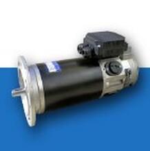 意大利DRIVE-SYSTEMS直流电机,M4835,减速器图片