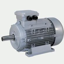 意大利NERI-MOTORI电机,T50B2