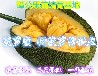 广东菠萝蜜苗80公分-1米高优质菠萝密苗树菠萝嫁接苗销售