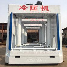 三元专业批发单层液压冷压机1.25mx1.2m冷压机图片