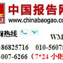 中国便携式色差仪行业发展态势及投资决策分析报告