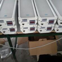 数字无线调频防水音柱图片