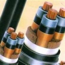 上海电缆线回收——诚实守信图片