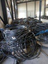 无锡电缆线回收近期《无锡旧电缆线回收价格》