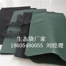 生态袋生态袋护坡植生袋生态袋厂家植生袋生产厂家图片
